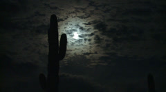 P02730 Full Moon and Saguaro Cactus in the Desert Stock Footage