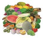Large variety of fresh fruit and vegetables Stock Photos