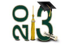Green and Gold 2013 Graduation Stock Illustration