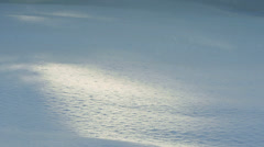 Snow Gently Falling on Drift Sun Patch Slow Motion Stock Footage