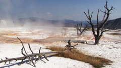 Yellowstone National Park - stock footage