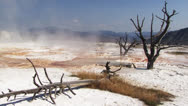 Stock Video Footage of Yellowstone National Park