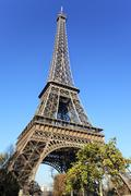 Eiffel tower and trees Stock Photos