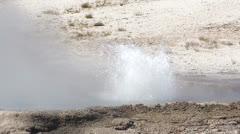 Erupting geyser Yellowstone National Park Stock Footage