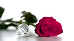 Diamond spinning beside pink rose Stock Footage