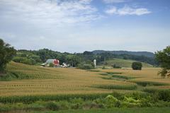 Wisconsin farm with red barn and corn field Stock Photos