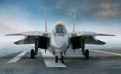 F-14 jet fighter on an aircraft carrier deck viewed from front Stock Photos