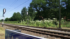 Giant Hogweed in bloom along railway track, bells ring, train passes 02 Stock Footage