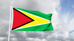 Flag of Guyana Stock Footage