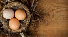 brown eggs in a nest with a wood background - stock photo