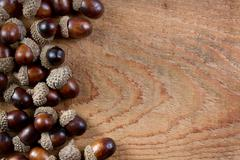acorns on a wooden background - stock photo