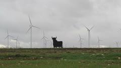 Windturbines with Osborne bull in Spain Stock Footage