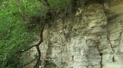 Limestone quarry with trees growing at edge, pan slope Stock Footage