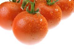 The dewy tomato Stock Photos