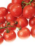 Stock Photo of the dewy tomato
