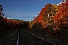 trans canadian railway tracks with autumn colors - stock photo