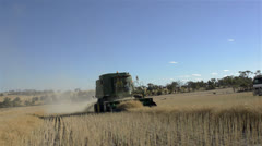 Harvesting a canola crop under blue skies Stock Footage