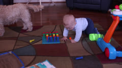 Baby crawling and walking with walker toy Stock Footage