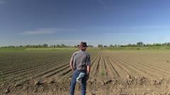 Farmer, Corn field Stock Footage