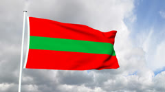 Flag of Transnistria Stock Footage
