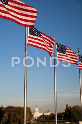Stock photo of the us capitol and us flags