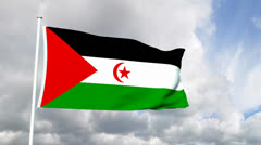 Flag of Western Sahara Stock Footage