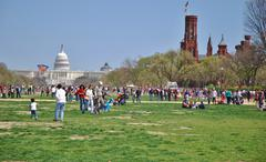 Kite Festival Event  in Washington, DC USA Stock Photos
