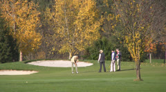 Autumn Golf Stock Footage
