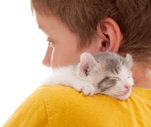 boy and kitten - stock photo