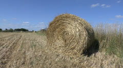 A straw roll hay bale with field behind. Stock Footage