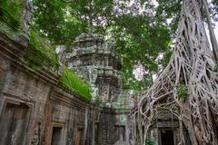 Ta Prohm in Angkor Wat Stock Photos