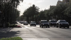 Miracle Mile, Coral Gables, Fl Stock Footage