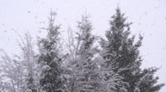 SLOW MOTION: Snowing in forest Stock Footage