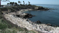 Wide of La Jolla Cove - stock footage