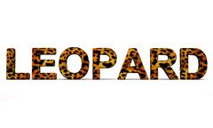 Leopard word with fur Stock Illustration