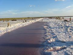 Landscape of extraction of salt with sun Stock Photos