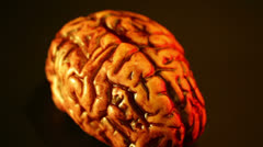 Brains rotate rotating Stock Footage