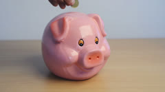 Collect your money in a saving pig, piggy bank. Stock Footage