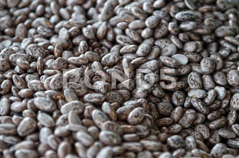 Stock photo of bean for background uses