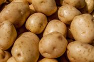 Close up of big white potatoes on market stand Stock Photos