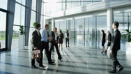 Stock Video Footage of Diverse group of business people in a light and modern office building