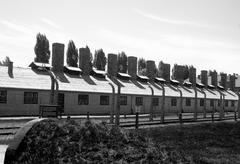 Cwire fence and barracks in auschwitz - birkenau concentration camp Stock Photos