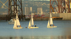 Sailboats in San Francisco Stock Footage