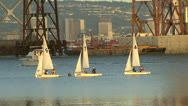 Stock Video Footage of Sailboats in San Francisco