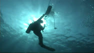 Stock Video Footage of Diver in backlight`