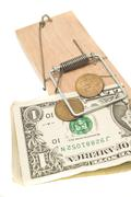 danger - money in the mousetrap - stock photo
