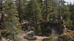 Beautiful mountain scenery forest and trails Lake Tahoe pan HD 5322 Stock Footage