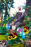 Wooden garden man Stock Photos
