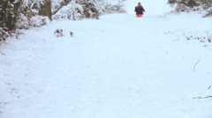 Caucasian Female Riding Sled Countryside Snow Stock Footage