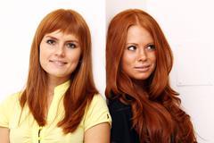 Two young beautiful redhead women Stock Photos